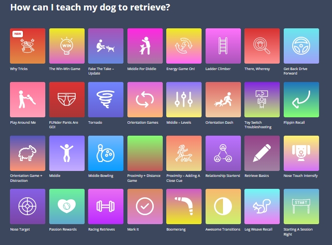 How can I teach retrieve